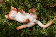 Sleeping gigner kitten | by walloyamorring