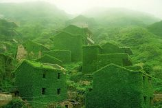 Witness the power of Mother Nature: An abandoned fishing village turns completely green! | Unusual Places