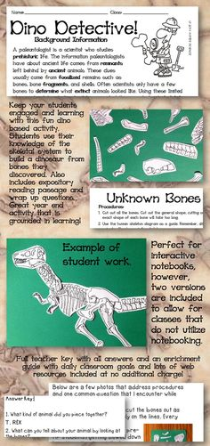 Keep your students on task and learning with this expository reading and problem solving activity that enriches body systems (skeletal). Students get to learn about paleontologists and build a dinosaur while enric Dinosaur Activities, Science Activities, Science Resources, Classroom Activities, Science Ideas, Science Experiments, Science Classroom, Science Lessons, Teaching Science
