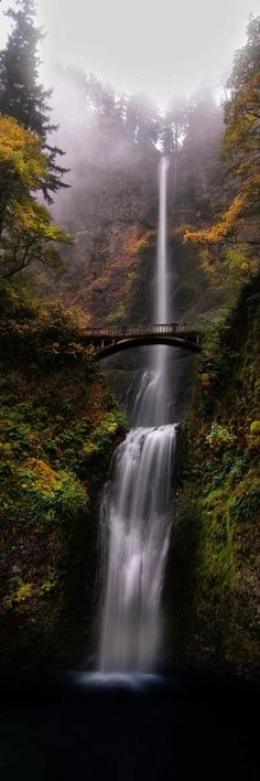 Love the way it goes from mistiness, to fluidness, to blackness at the bottom.... --Pia (Multnomah Falls - Portland, Oregon - the waterfall story from The Shack.)