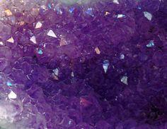 ♡ All things purple ♡
