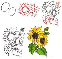 Как нарисовать цветок - Подсолнух, фото Sharpie Drawings, 3d Drawings, Sunflower Drawing, Watercolor Sunflower, Small Canvas Paintings, Canvas Art, Flower Drawing Tutorials, Drawing Flowers, Flower Drawings