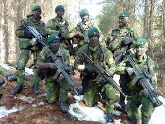 Swedish Amphibious Corps (Marines).