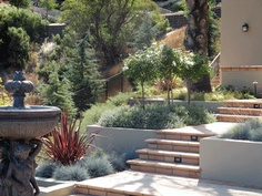 Creative Exteriors Landscape Design