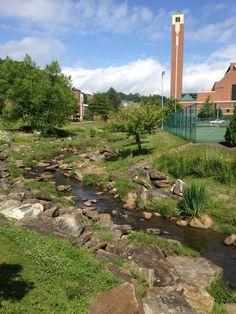 Appalachian State University in Boone, NC