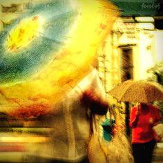 rainy day, street, umbrela, unfocused, blur, motion (C)Anankah Photography