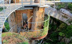 Tree House in Austin, Texas