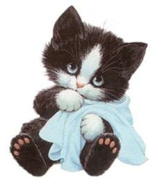 Kittens Cutest, Cats And Kittens, Cute Cats, Animals And Pets, Baby Animals, Cute Animals, Vintage Cat, Cat Drawing, Cat Art