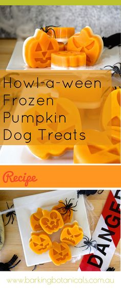 Halloween Dog Treats - these healthy and delicious all natural frozen pumpkin treats are perfect for your dog this howl-a-ween.