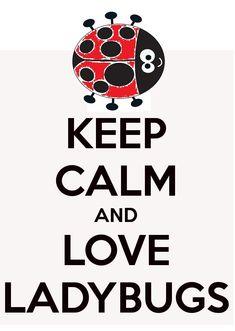 LOVE LADYBUGS.