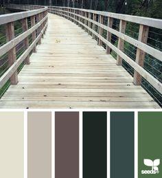 color path  09.23.14
