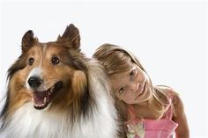 """The Collie - This is the dog breed that """"Lassie"""" made famous. Collies are a very gentle and predictable breed, easily trainable and rarely aggressive — which is perfect for families who are unfamiliar with dogs. Collies get along great with children and love to please their owners and protect their family."""