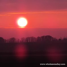 This mornings sunrise was full on the horizon and bright red. It looked amazing so I stopped to take some photos.