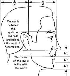 Mon Wibbles...: Les Proportions du visage... Profil de côté... 4885   32 comment dessiner