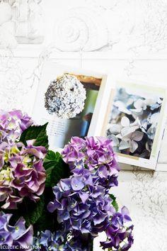 Wir ihr Hortensien perfekt trocknet und Ideen zur Deko - Eclectic Hamilton
