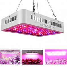 ColoFocus LED Indoor Plants Grow Light Kit, Full Spectrum with UV&IR for Indoor Greenhouse Plants Veg and Flower Growing Plants Indoors, Grow Lights For Plants, Growing Herbs, Solar Panel Kits, Solar Panels, Greenhouse Plants, Backyard Greenhouse, Greenhouse Ideas, Organic Nutrients