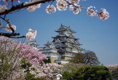 Osaka is one of the largest Japanese city.
