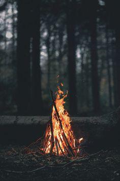 bonfires in the woods
