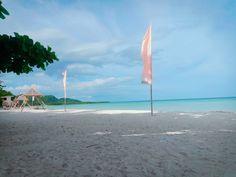 Wind Turbine, Beach, Life, The Beach, Beaches