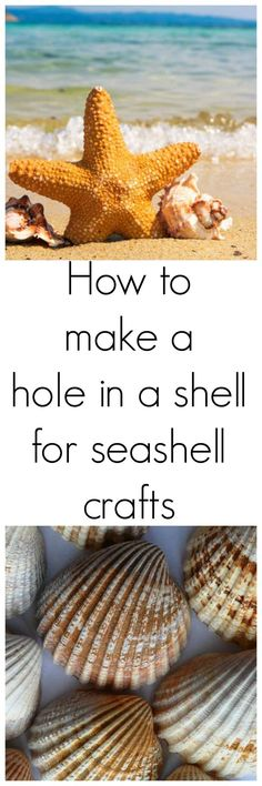 Try this easy method for making holes in seashells. Make jewelry and crafts from shells #seashell #shellcraft #holeinashell #seashellart #seashelljewelerly #shelldiy