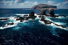 The Galapagos Islands: A World Like No Other