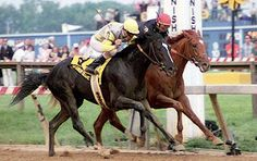 Sunday Silence and Easy Goer... a rivalry for the ages. (Easy Goer my all time favorite)