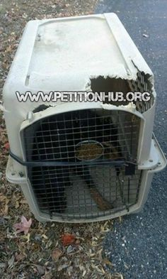 Maximum Penalty For Owner That Abandoned His Rottweiler In The Cold! The Dog Was Tethered In A Kennel And Tried To Chew His Way Out! | PetitionHub.org