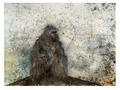 Miquel Barceló, La solitude organisative, 2008.