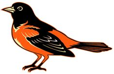 Baltimore Orioles logo... Our first MLB game was in Baltimore.  Think Sean will be a fan for life.