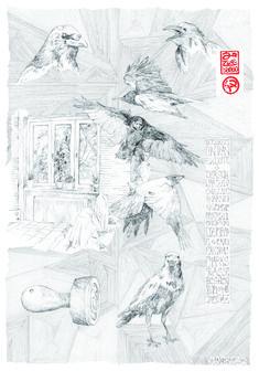 eine Krähe, die sich in das Zimmer verflog 70 x 100 cm Bleistift 2013 Hamster, Giraffe, 1, Snow, Outdoor, Corona, Rodents, Amphibians, Marine Life