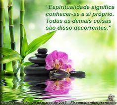 """""""Espiritualidade significa conhecer-se a si próprio. Todas as demais coisas são disso decorrentes."""""""