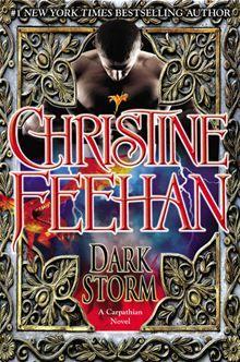 Dark Storm By: Christine Feehan. Click Here to buy this eBook: http://www.kobobooks.com/ebook/Dark-Storm/book-R3dSfpFlmU2PS5qLfw8kRQ/page1.html# #kobo #ebooks
