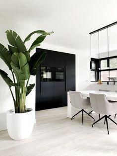 Interior Design Plants, Modern Home Interior Design, Home Room Design, Interior Architecture, House Design, Decoration Plante, Elegant Dining Room, House Plants Decor, Home Decor Mirrors