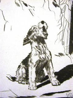 Diana Thorne Singing Fox Terrier Howling 1935 Vintage Dog Art Print Matted | eBay