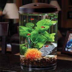 Hawkeye 3 gallon 360 starter aquarium kit with led for Self cleaning fish tank walmart