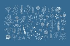 Check out Freehand Vector Decor Pack by Lera Efremova on Creative Market