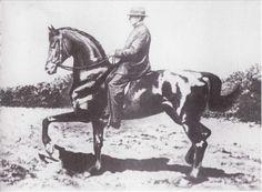 Étienne Beudant sur Vallerine - 1926 - Piaffer brillant. - Équitation de légèreté : à la recherche de la...