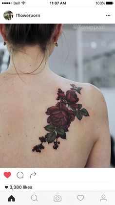 20 Shoulder Rose Tattoo Ideas For You To Try for dimensions 1080 X 1080 Roses On Shoulder Blade Tattoo - The hunt for the best Shoulder Tattoo Designs can Red Tattoos, Pretty Tattoos, Mini Tattoos, Unique Tattoos, Beautiful Tattoos, Body Art Tattoos, Sleeve Tattoos, Cool Tattoos, Tatoos