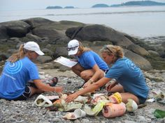 Sorting marine debris and marking it down on the data card!