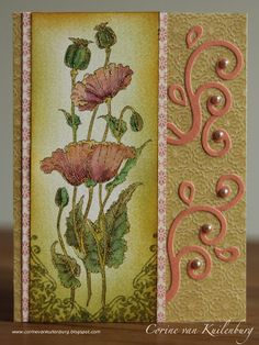 Corine's Gallery: Pretty Poppies Chocolate Baroque