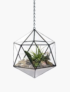 Suspended Terrarium by Mathew Cleland: Includes rocks, sand, activated charcoal and a quartz crystal. Handmade of glass and lead free solder. #Mathew_Cleland  #Terrarium #Hanging_Terrarium #scoreandsolder