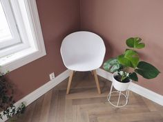 Bilderesultat for jade jotun Eames, Lens, Blush, Warm, Chair, Interior, Inspiration, Furniture, Home Decor