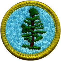 Dunwoody Nature Center Scout Badges