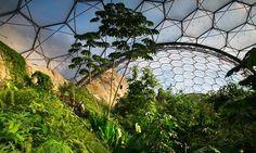 The Humid Tropics Biome At Eden Project Bodelva UK