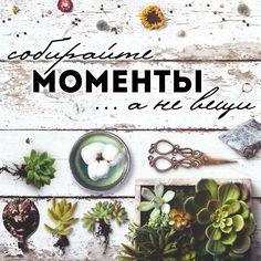 Собирай моменты ...а не вещи! quotes, цитаты, love and life, motivational, цитаты об отношениях, любви и жизни, фразы и мысли, мотивация, цитаты на русском