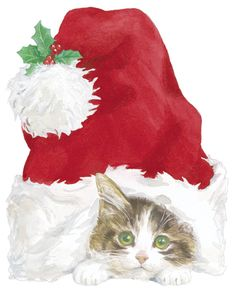 """Kitten in Santa's Hat"""