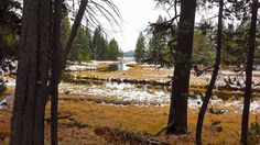 DeLacy Creek flows into Shoshone Lake, Yellowstone National Park/MShoop 10-7-16