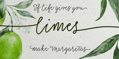 Check out the Salt & Spices Mono font at Fontspring. Where Salt & Spices Pro has the rough contours and high contrast that is typical for dip pen calligraphy, Salt & Spices Mono has clean crisp smooth letterforms that result in a totally different look and feel.