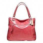 new Coach bag ($300)...I could buy a purse or have heat and electricity...but love this color!