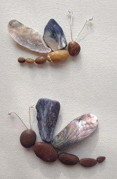 Pebble art Seashell art Dragonflies framed by EmilysNatureEmporium